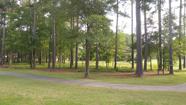 Lot 107 Cypress Landing Trail, Chocowinity, NC 27817 (MLS #100236595) :: Berkshire Hathaway HomeServices Prime Properties
