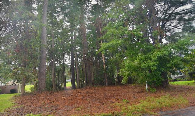 215 Stadler Drive, New Bern, NC 28560 (MLS #100237161) :: David Cummings Real Estate Team
