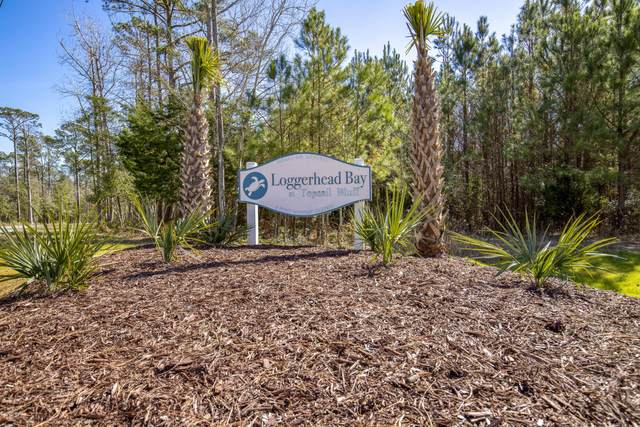 204 Gus Horne Road, Holly Ridge, NC 28445 (MLS #100237183) :: The Oceanaire Realty