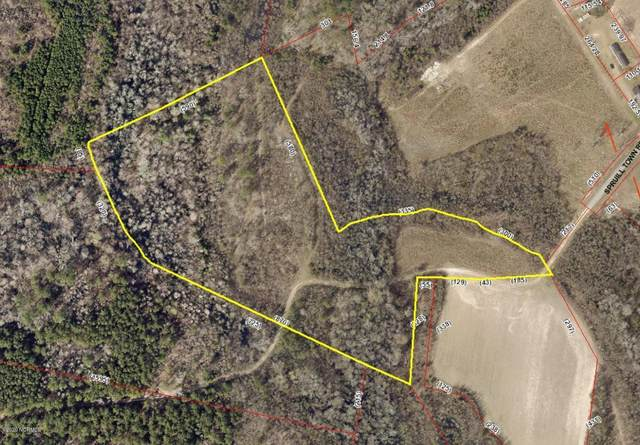 Tbd Spruill Town Road, Vanceboro, NC 28586 (MLS #100237533) :: Stancill Realty Group