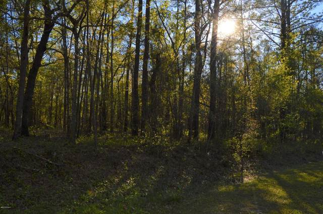 Lot 45 Lakeshore Drive, Minnesott Beach, NC 28510 (MLS #100238256) :: Castro Real Estate Team