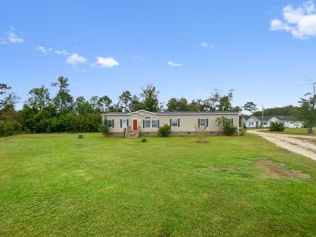 233 Mewborn Drive, Beulaville, NC 28518 (MLS #100238701) :: Frost Real Estate Team