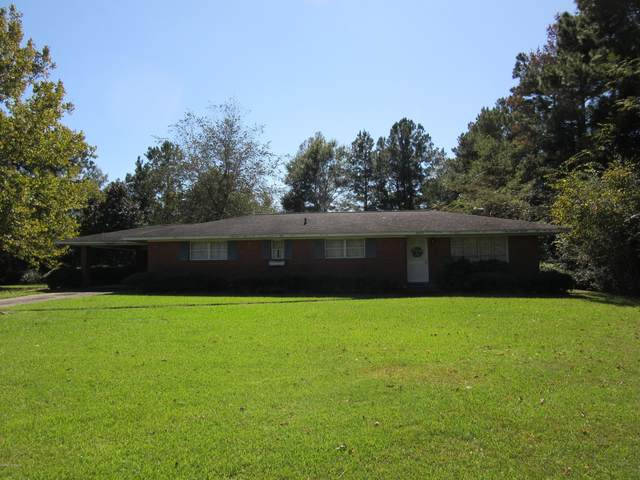 14227 Rough And Ready Road, Fair Bluff, NC 28439 (MLS #100239440) :: Destination Realty Corp.