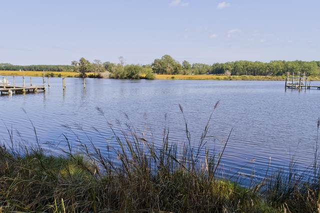 120 Spinnaker Point Road N, Oriental, NC 28571 (MLS #100240193) :: The Rising Tide Team