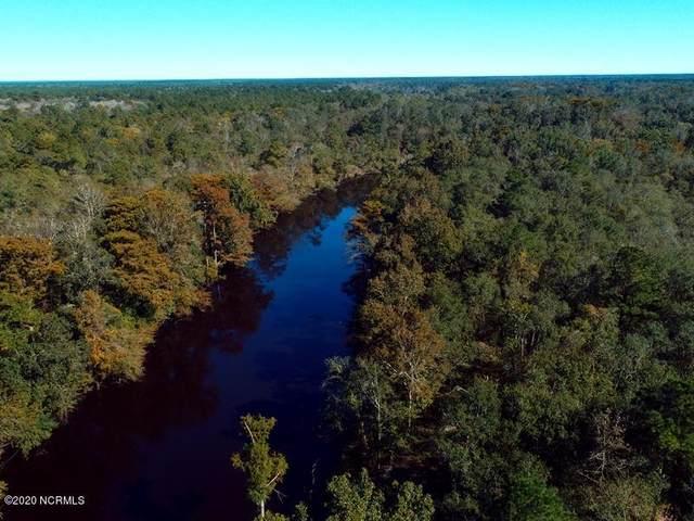 14 Ruddy Duck Lane, Burgaw, NC 28425 (MLS #100241797) :: Welcome Home Realty