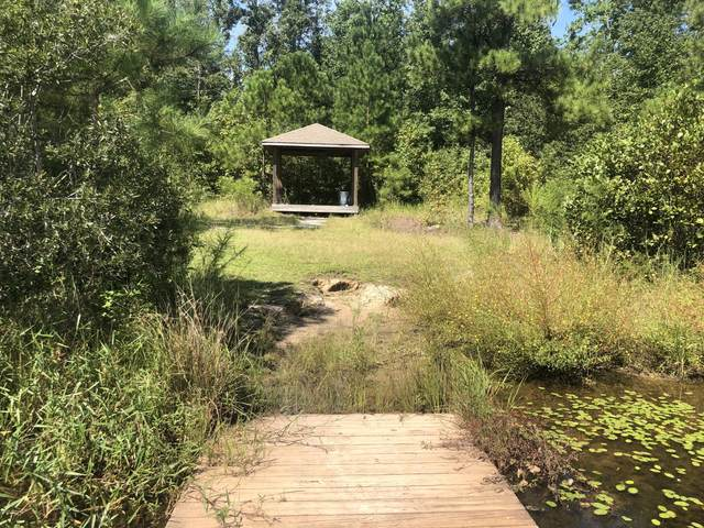 Highway 11 W/S 11, Wallace, NC 28466 (MLS #100241829) :: Destination Realty Corp.