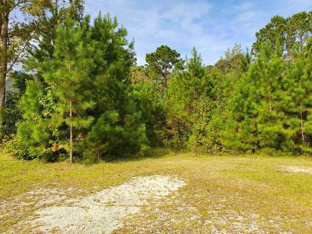 207 Farina Drive, Havelock, NC 28532 (MLS #100241931) :: Barefoot-Chandler & Associates LLC