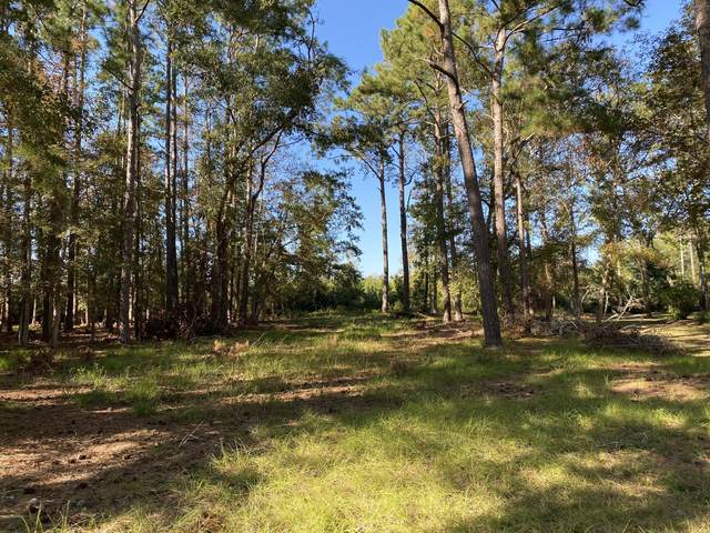 458 Genoes Point Road SW, Supply, NC 28462 (MLS #100241998) :: Barefoot-Chandler & Associates LLC
