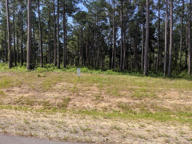 216 Alderman Landing, Holly Ridge, NC 28445 (MLS #100242152) :: Barefoot-Chandler & Associates LLC