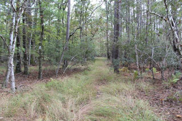 Tbd Berrys Creek Road, Beaufort, NC 28516 (MLS #100242774) :: Stancill Realty Group