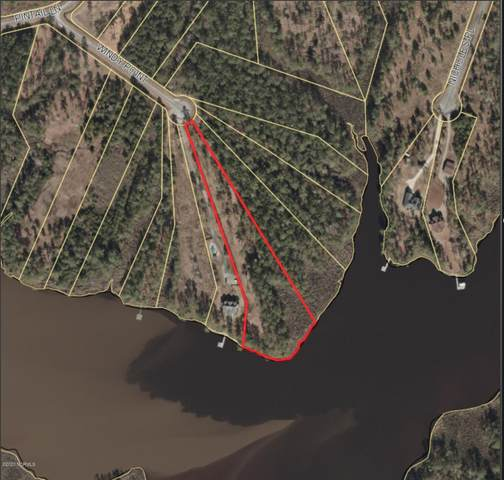 38 Windy Pointe Point, Belhaven, NC 27810 (MLS #100243219) :: Vance Young and Associates