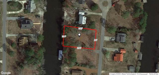 74 Hawk Drive, Harrells, NC 28444 (MLS #100243249) :: CENTURY 21 Sweyer & Associates