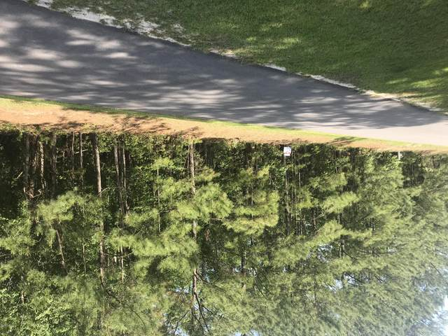 132 Little Creek Drive, Havelock, NC 28532 (MLS #100243345) :: Liz Freeman Team