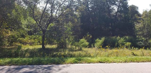 311 Bull Tail Road, Wallace, NC 28466 (MLS #100243514) :: Barefoot-Chandler & Associates LLC