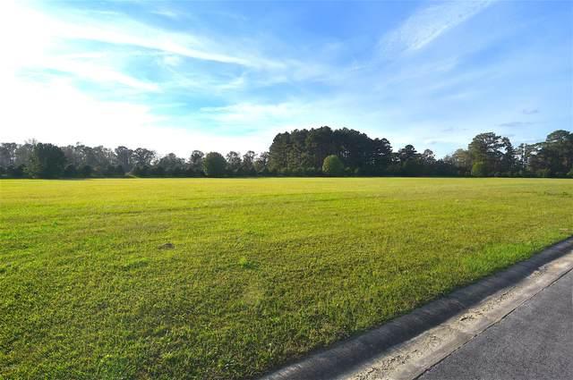 5 Elbert Lee Road N, Arapahoe, NC 28510 (MLS #100243668) :: RE/MAX Essential