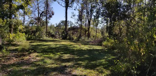 Lot 157 Sea Turtle Lane, Hampstead, NC 28443 (MLS #100243846) :: Lynda Haraway Group Real Estate