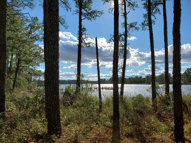 69 Favorite Place, Belhaven, NC 27810 (MLS #100243869) :: Vance Young and Associates
