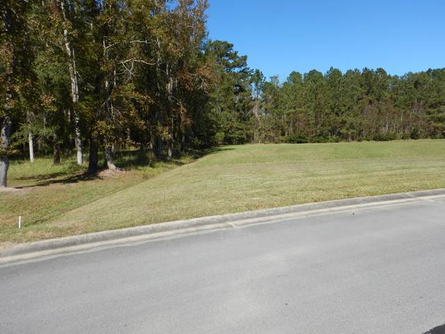 796 Southern Plantation Drive N, Oriental, NC 28571 (MLS #100244933) :: The Oceanaire Realty