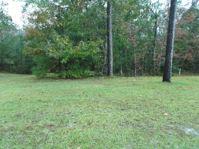 1881 Oyster Harbour Parkway SW, Supply, NC 28462 (MLS #100245353) :: Vance Young and Associates