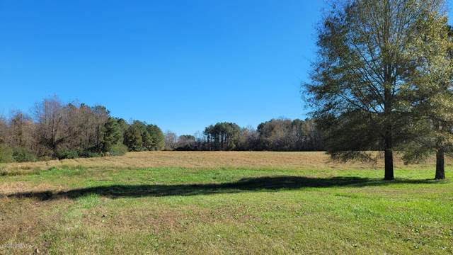 3339 S Browntown Road, Rocky Mount, NC 27804 (MLS #100245739) :: Donna & Team New Bern