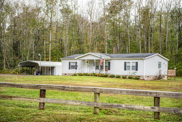 493 King Neck Road, New Bern, NC 28560 (MLS #100245940) :: Stancill Realty Group