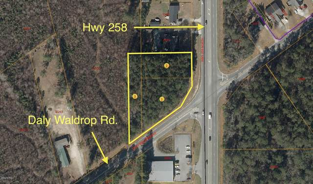 2101 Daly Waldrop Road, Kinston, NC 28504 (MLS #100247207) :: Berkshire Hathaway HomeServices Prime Properties