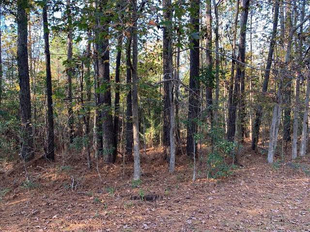 2226 Elkin Street SW, Supply, NC 28462 (MLS #100247228) :: Great Moves Realty