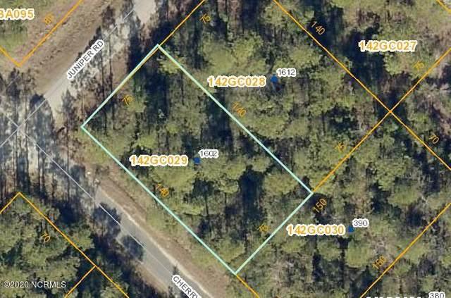 1602 Juniper Road, Boiling Spring Lakes, NC 28461 (MLS #100247245) :: Barefoot-Chandler & Associates LLC