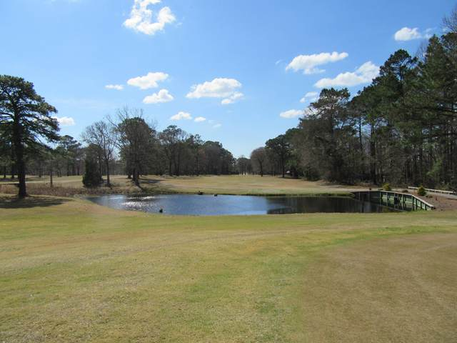 379 Country Club Drive W, Minnesott Beach, NC 28510 (MLS #100247428) :: Great Moves Realty