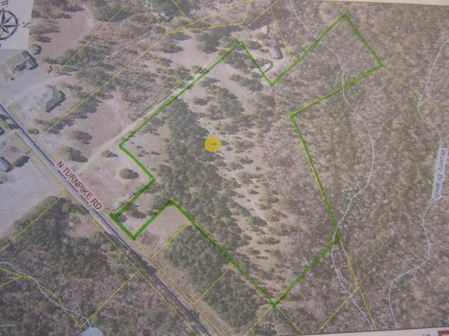 Lot # 17 Turnpike Road, Wagram, NC 28396 (MLS #100247663) :: Lynda Haraway Group Real Estate