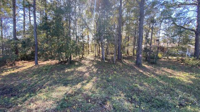 1035 Stanbury Road SW, Supply, NC 28462 (MLS #100247935) :: Great Moves Realty