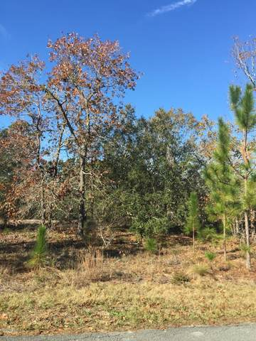 Lot 14 Twin Lakes Drive, Boiling Spring Lakes, NC 28461 (MLS #100248039) :: Donna & Team New Bern
