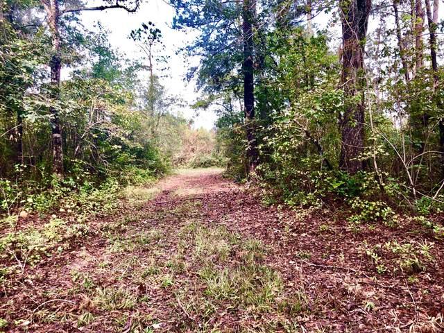 0 River Road, Vanceboro, NC 28586 (MLS #100250052) :: CENTURY 21 Sweyer & Associates