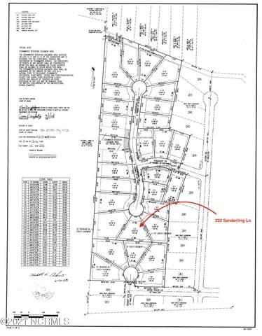222 Sanderling Lane, New Bern, NC 28562 (MLS #100252918) :: Vance Young and Associates