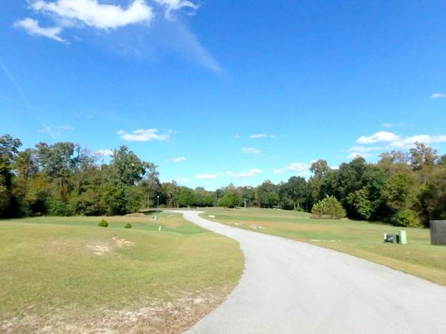 203 Lazy River Court, Jacksonville, NC 28540 (MLS #100253903) :: Berkshire Hathaway HomeServices Prime Properties