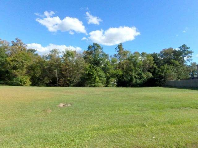205 Lazy River Court, Jacksonville, NC 28540 (MLS #100253917) :: Berkshire Hathaway HomeServices Prime Properties