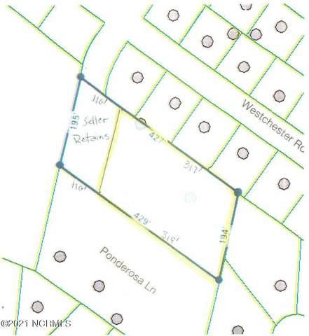 525 Ponderosa Lane, Wilmington, NC 28409 (MLS #100257040) :: David Cummings Real Estate Team