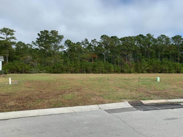 309 Lightning Bug Lane, Holly Ridge, NC 28445 (MLS #100257052) :: Thirty 4 North Properties Group