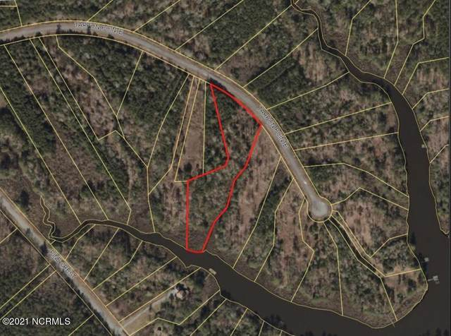 55 Tarpon Pointe Rd, Bath, NC 27808 (MLS #100257254) :: Stancill Realty Group