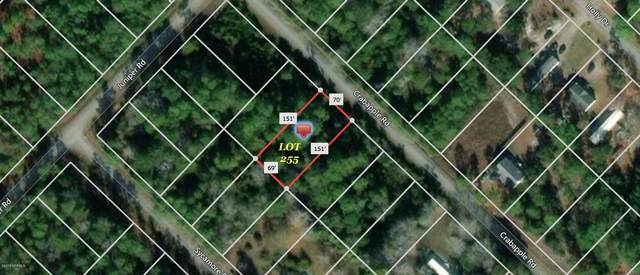 371 & 381 Crab Apple Road, Southport, NC 28461 (MLS #100258203) :: The Legacy Team