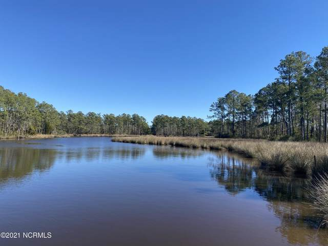 Lot 2 Alexander Drive, Belhaven, NC 27810 (MLS #100258429) :: Great Moves Realty