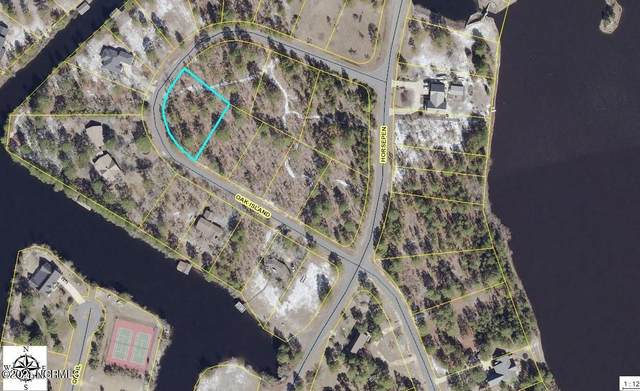 238 Oak Island Road, Harrells, NC 28444 (MLS #100259063) :: Vance Young and Associates