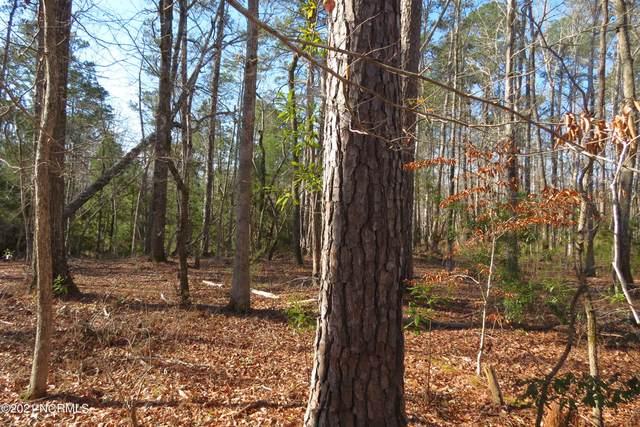 98 Winding Creek Drive, Oriental, NC 28571 (MLS #100259444) :: Great Moves Realty