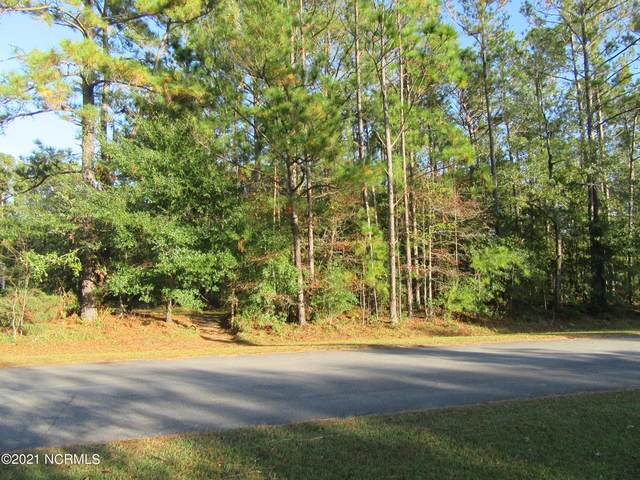 275 Phillips Drive, Minnesott Beach, NC 28510 (MLS #100259541) :: Great Moves Realty