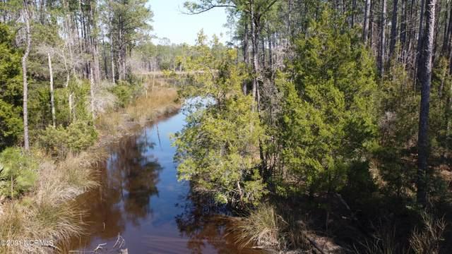 14 Quail Road, Merritt, NC 28556 (MLS #100260587) :: The Oceanaire Realty