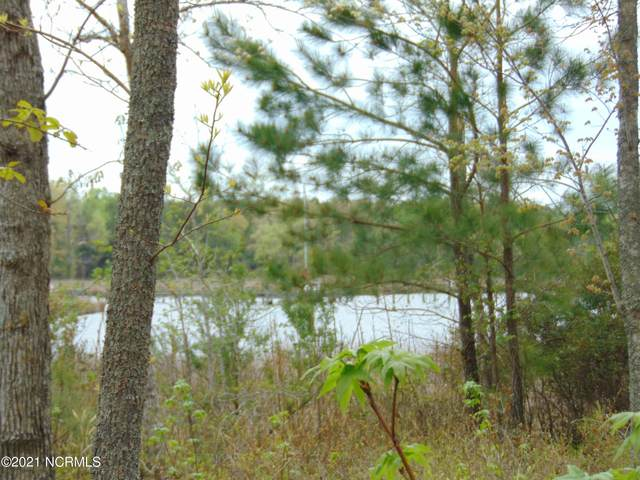 Lot 12 Ashton Drive, Bath, NC 27808 (MLS #100261810) :: Great Moves Realty