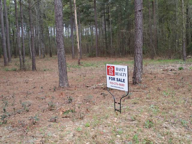 4 Carnostie Drive, Laurinburg, NC 28352 (MLS #100264026) :: Castro Real Estate Team