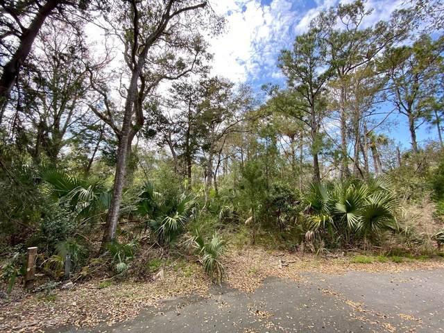 2112 Heron Trace, Bald Head Island, NC 28461 (MLS #100264109) :: Donna & Team New Bern