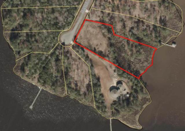 39 Sunset Point, Belhaven, NC 27810 (MLS #100264502) :: Great Moves Realty