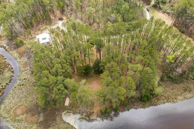 317 Morris Creek Lane, Oriental, NC 28571 (MLS #100264842) :: Donna & Team New Bern